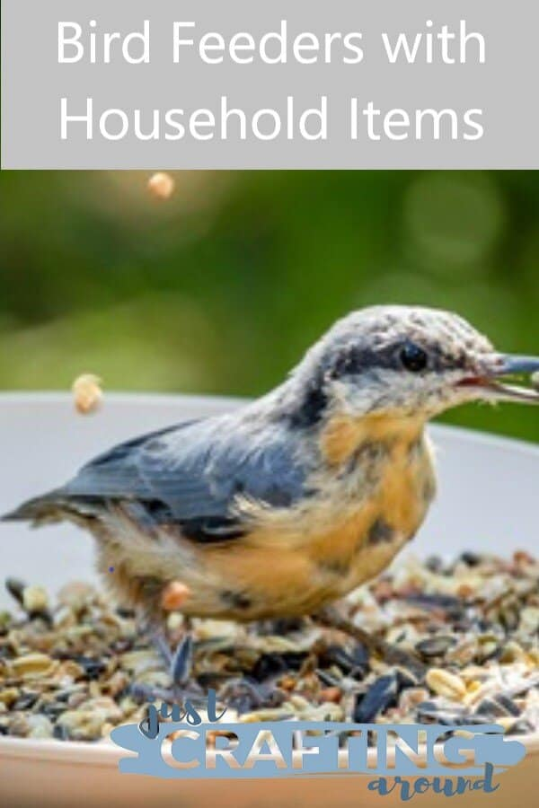 bowl bird feeder